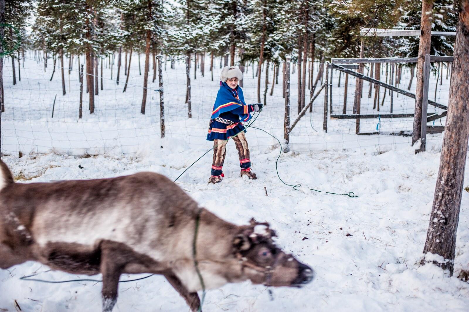 Sami eco tourism